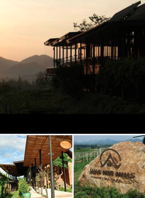 Monsoon Hua Hin Hills_Vineyard
